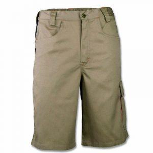 31590_kavir shorts
